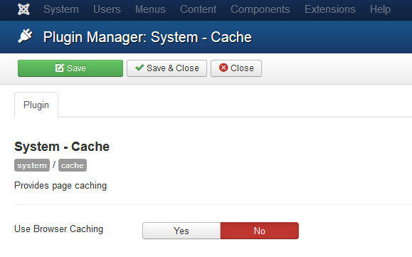 browser_cache